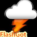 FlashGot indir