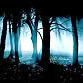 Slender's Woods indir