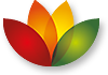 SoftMaker FreeOffice indir
