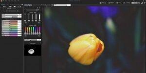 ACDSee Pro Ekran Görüntüsü