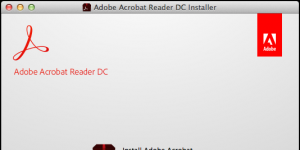 Adobe Acrobat Reader DC Ekran Görüntüsü