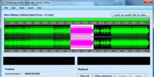 Apowersoft Ses Kaydedici Ekran Görüntüsü