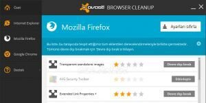 Avast! Browser Cleanup Ekran Görüntüsü
