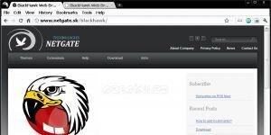 BlackHawk Web Browser Ekran Görüntüsü