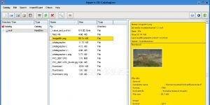 CdCat Ekran Görüntüsü