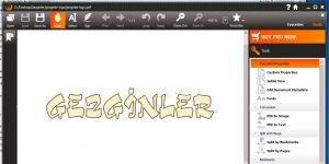 Debenu PDF Tools Ekran Görüntüsü