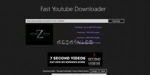 Fast Youtube Downloader Ekran Görüntüsü