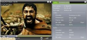 Fortop FLV Player Ekran Görüntüsü
