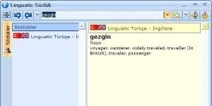 Linguatic Sözlük Ekran Görüntüsü