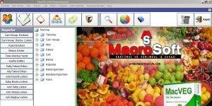 MacroSoft MacVeg Hal Programı Ekran Görüntüsü