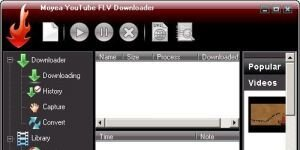 Pavtube YouTube FLV Downloader Pro Ekran G�r�nt�s�
