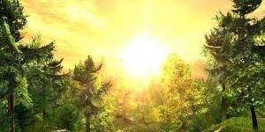 Nature 3D Screensaver Ekran G�r�nt�s�