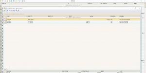 NetBakiye Cari Takip Program� Ekran G�r�nt�s�
