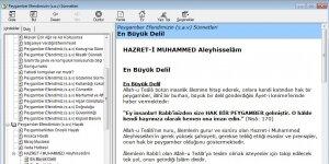 Peygamber Efendimizin(s.a.v) Hayatı ve Sünnetleri E-kitap Ekran Görüntüsü