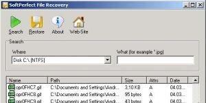 SoftPerfect File Recovery Ekran Görüntüsü
