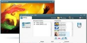 SolveigMM AVI + MKV Trimmer Ekran Görüntüsü