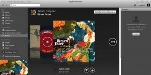 Spotify Ekran Görüntüsü