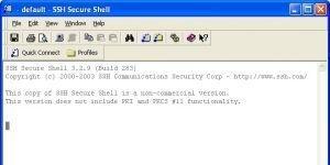 SSH Secure Shell Ekran Görüntüsü