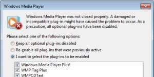 Windows Media Player Plus! Ekran Görüntüsü