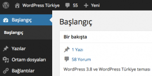WordPress Türkçe Ekran Görüntüsü