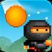8bit Ninja Android